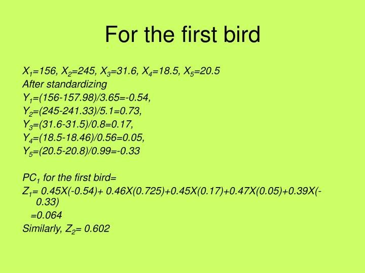 For the first bird