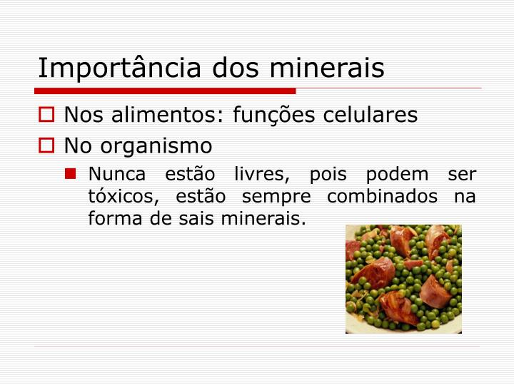 Importância dos minerais