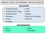 herbicide options for waterhemp control in soybeans
