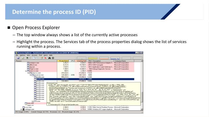 Determine the process ID (PID)