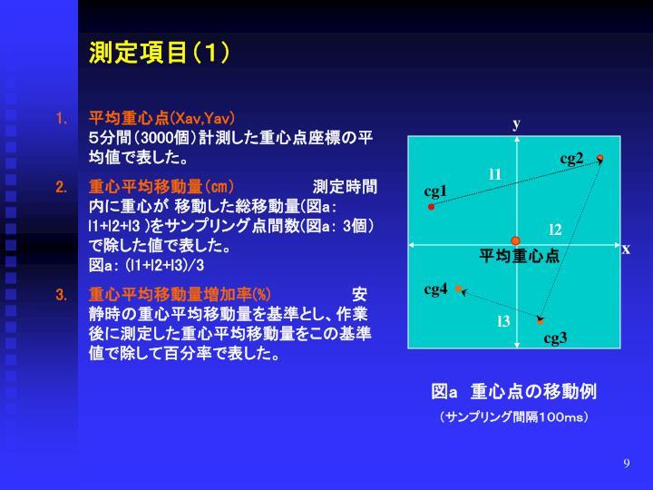 測定項目(1)