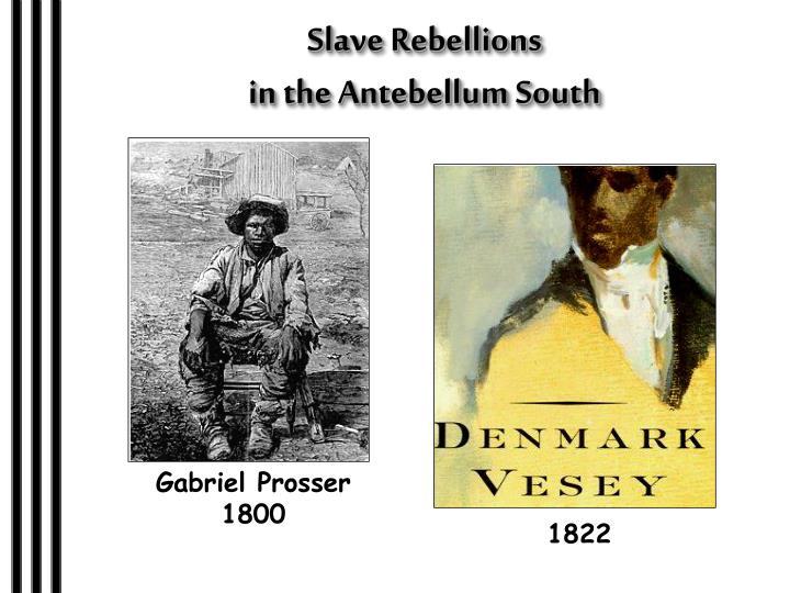 Slave Rebellions