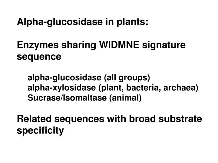 Alpha-glucosidase in plants: