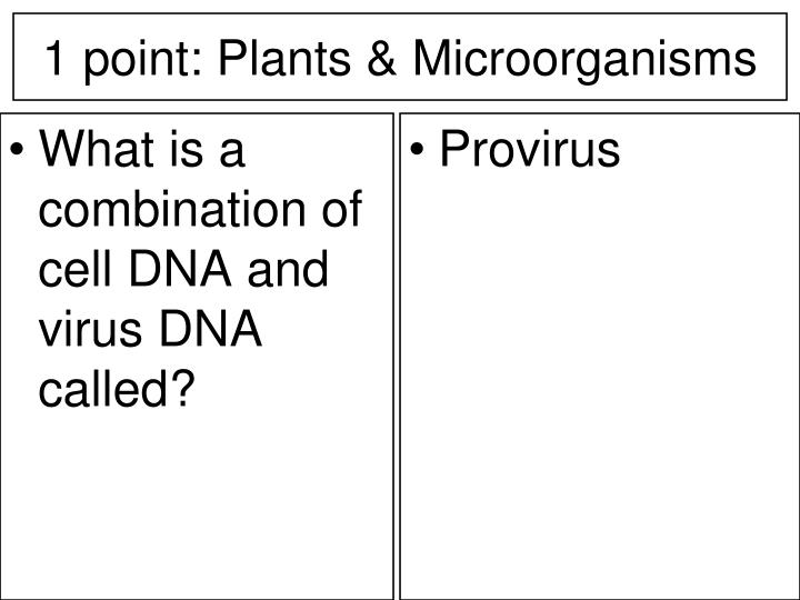 1 point plants microorganisms