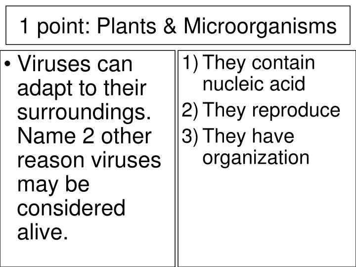 Viruses can adapt to their surroundings. Name 2 other reason viruses may be considered alive.