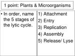 1 point plants microorganisms17