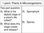 1 point plants microorganisms3