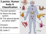2 points human body classification