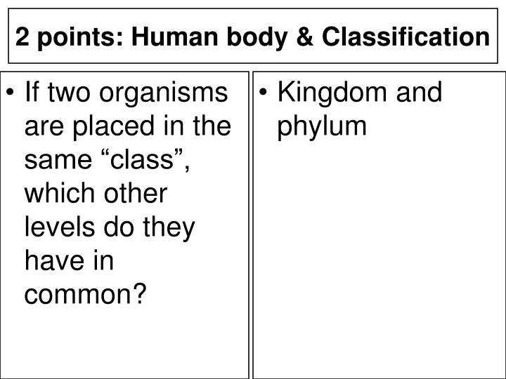 "If two organisms are placed in the same ""class"", which other levels do they have in common?"