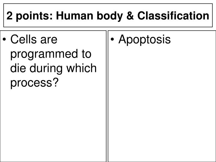 Cells are programmed to die during which process?