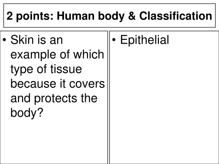 Skin is an example of which type of tissue because it covers and protects the body?
