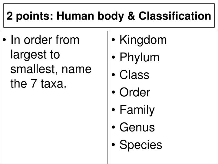 In order from largest to smallest, name the 7 taxa.