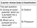 2 points human body classification8