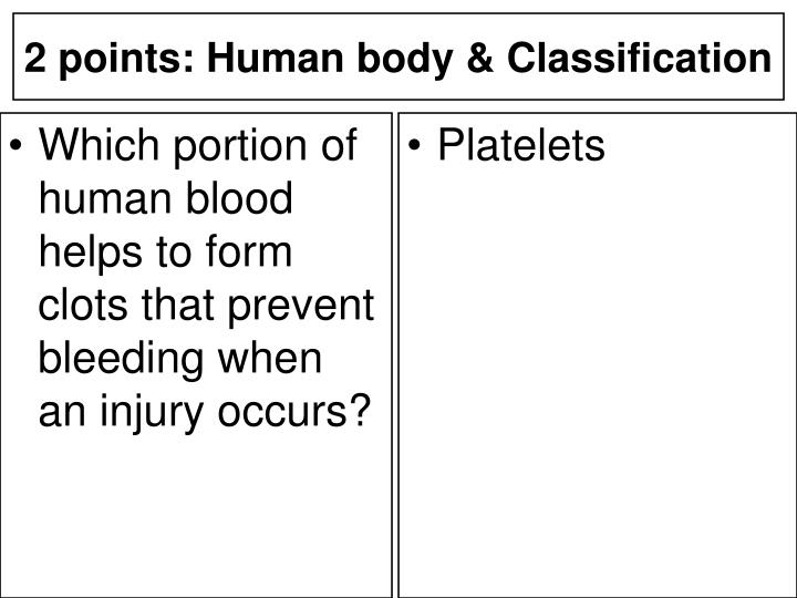 Which portion of human blood helps to form clots that prevent bleeding when an injury occurs?