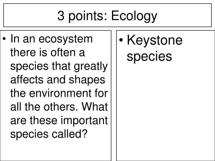 In an ecosystem there is often a species that greatly affects and shapes the environment for all the others. What are these important species called?
