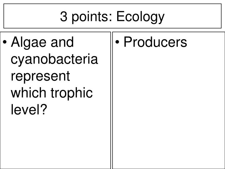 Algae and cyanobacteria represent which trophic level?