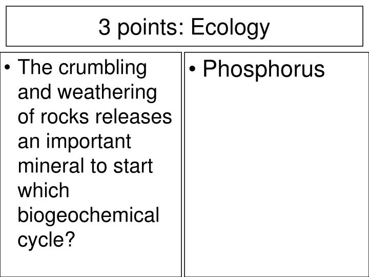 The crumbling and weathering of rocks releases an important mineral to start which biogeochemical cycle?