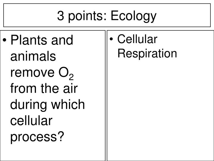Plants and animals remove O