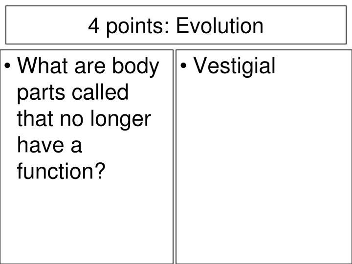 What are body parts called that no longer have a function?