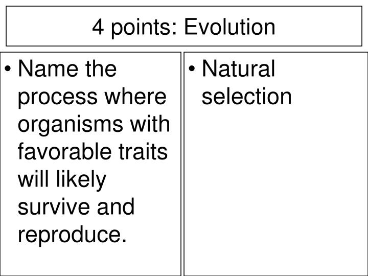 Name the process where organisms with favorable traits will likely survive and reproduce.