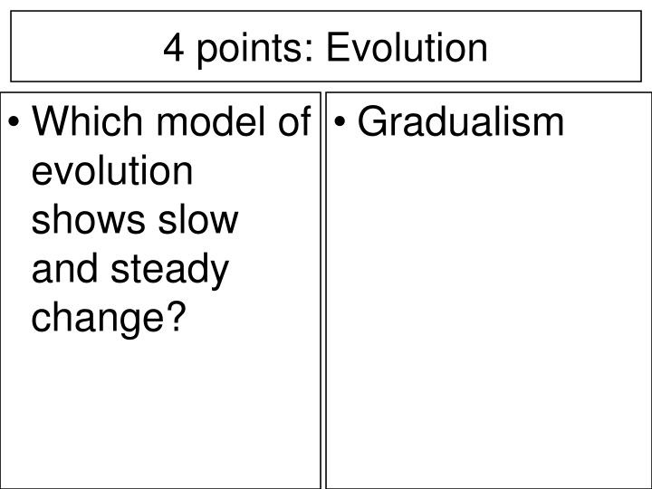 Which model of evolution shows slow and steady change?