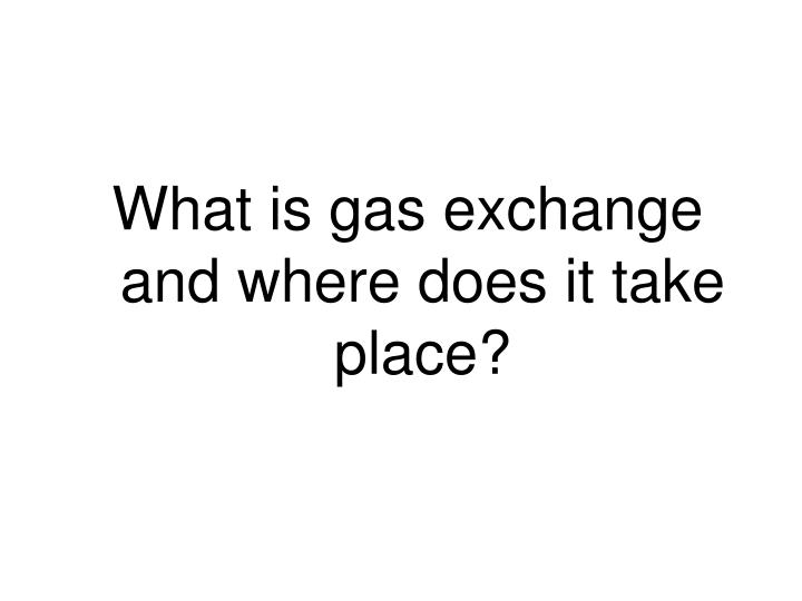 What is gas exchange and where does it take place?