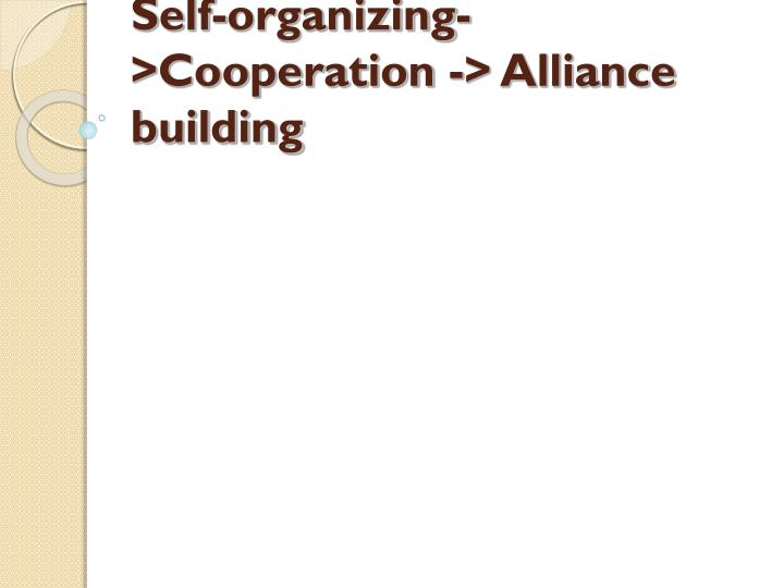 Self-organizing->Cooperation -> Alliance building