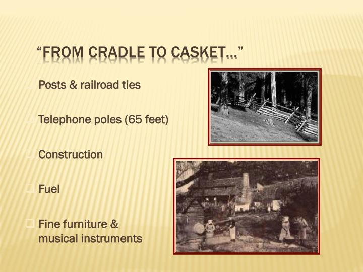 """From cradle to casket…"""