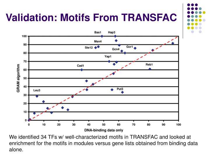 Validation: Motifs From TRANSFAC
