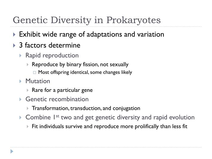 Genetic Diversity in Prokaryotes