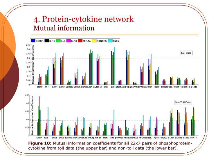 4. Protein-cytokine