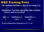 ieee floating point3
