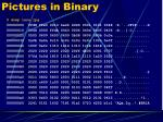 pictures in binary1