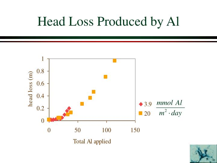 Head Loss Produced by Al