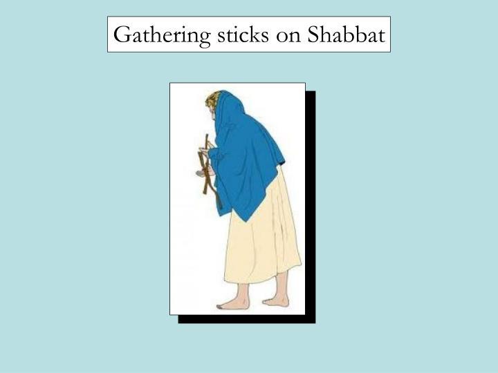 Gathering sticks on Shabbat