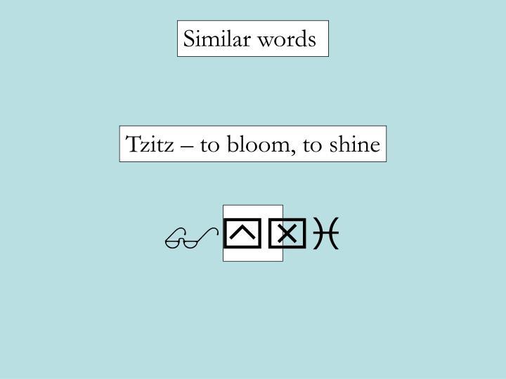 Similar words