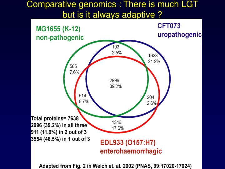 Comparative genomics : There is much LGT
