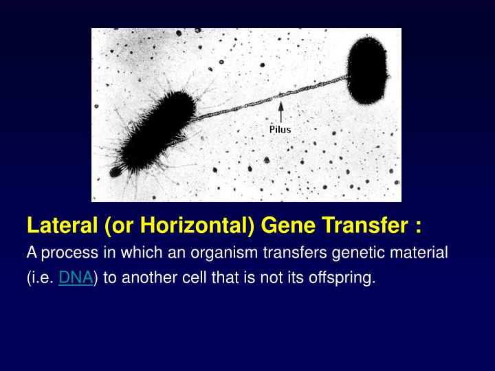 Lateral (or Horizontal) Gene Transfer :