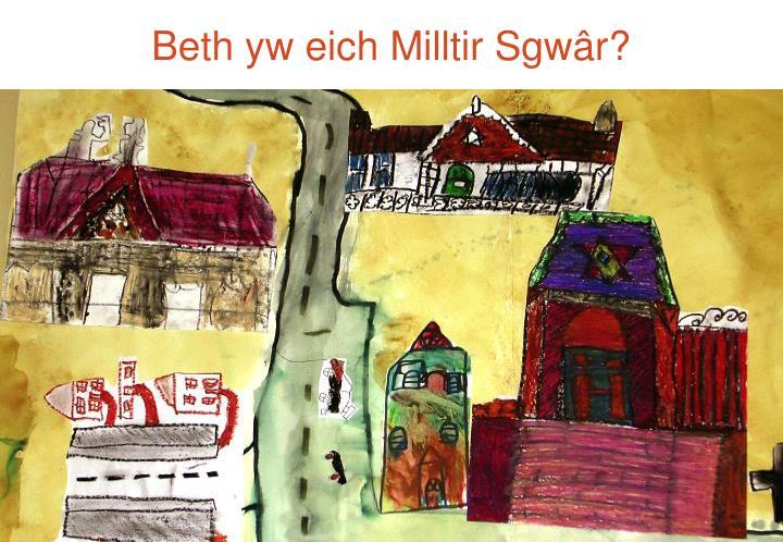 Beth yw eich Milltir Sgwâr?