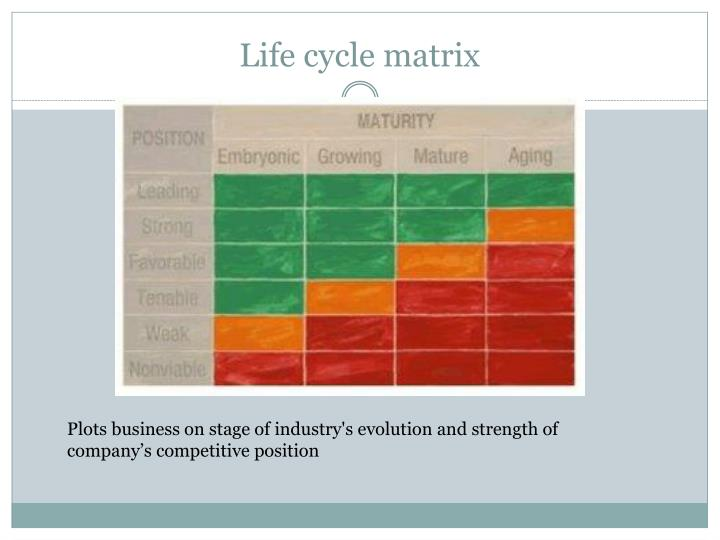 Life cycle matrix