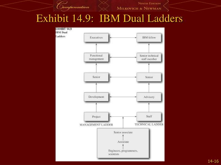 Exhibit 14.9:  IBM Dual Ladders