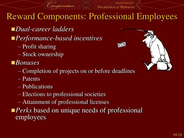 Reward Components: Professional Employees