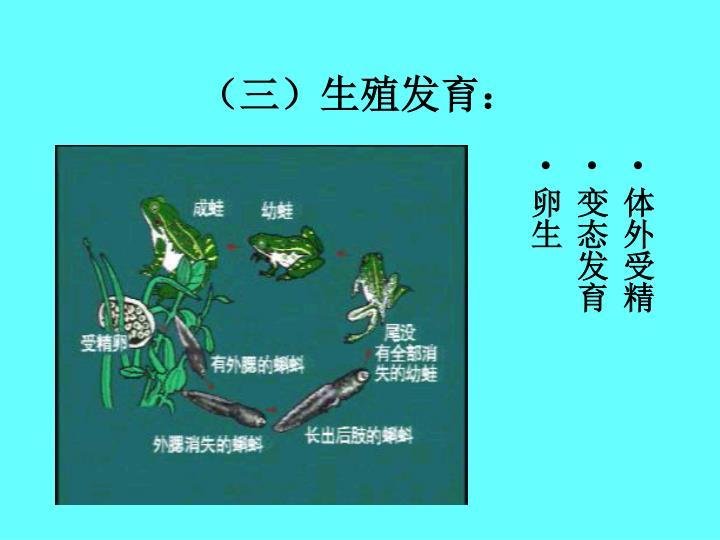 (三)生殖发育: