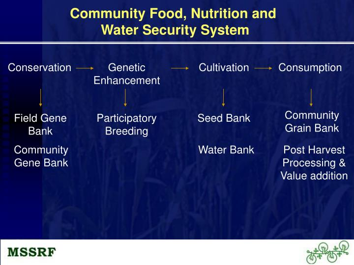 Community Food, Nutrition and