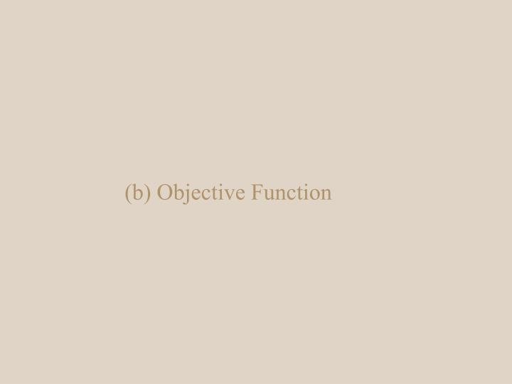 (b) Objective Function