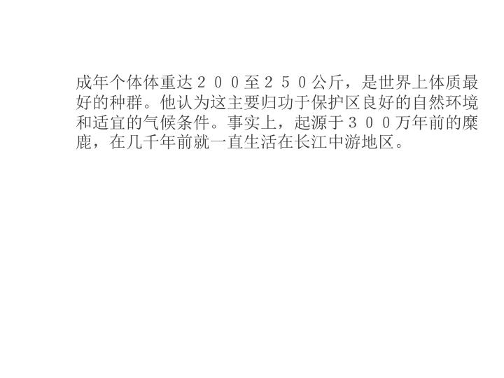 成年个体体重达200至250公斤,是世界上体质最好的种群。他认为这主要归功于保护区良好的自然环境和适宜的气候条件。事实上,起源于300万年前的糜鹿,在几千年前就一直生活在长江中游地区。