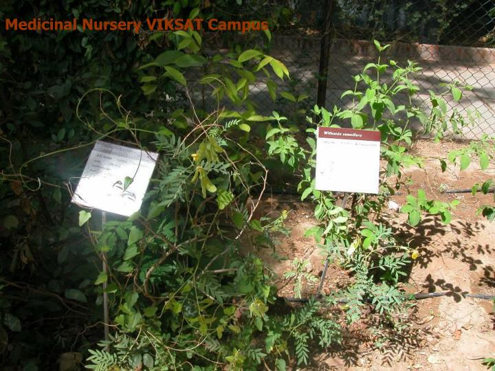 Medicinal Nursery VIKSAT Campus