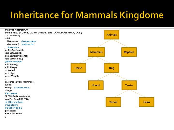 Inheritance for Mammals Kingdome