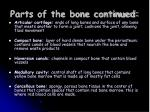 parts of the bone continued