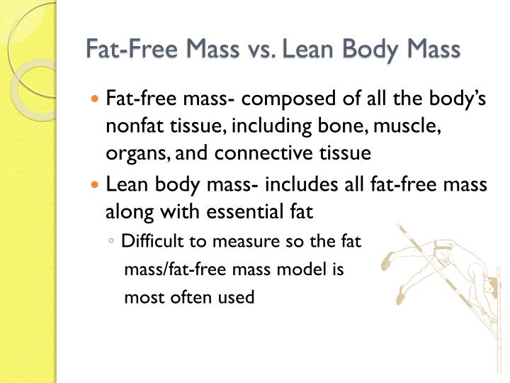 lean body mass and weight relationship